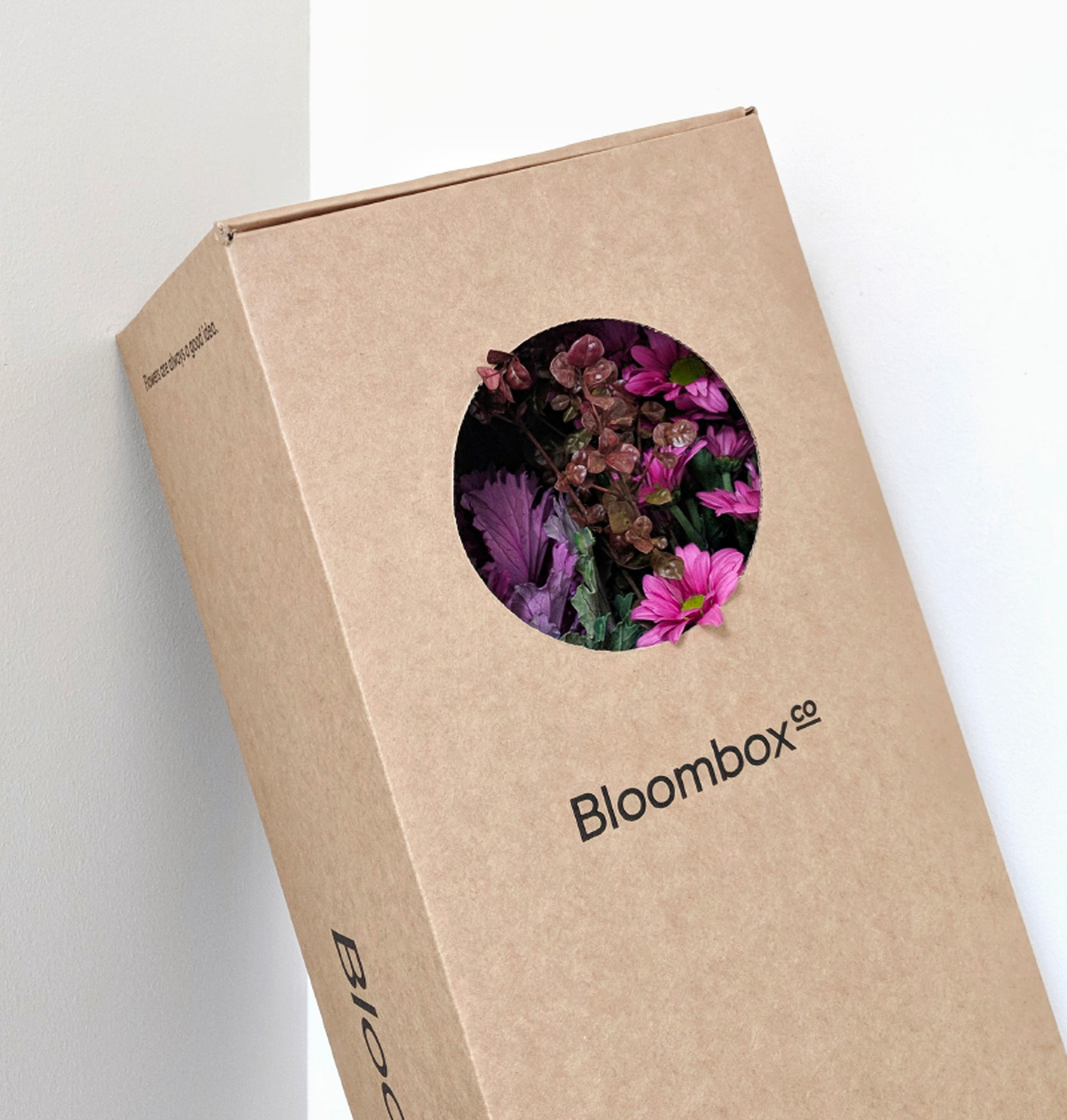 picture_bloombox1