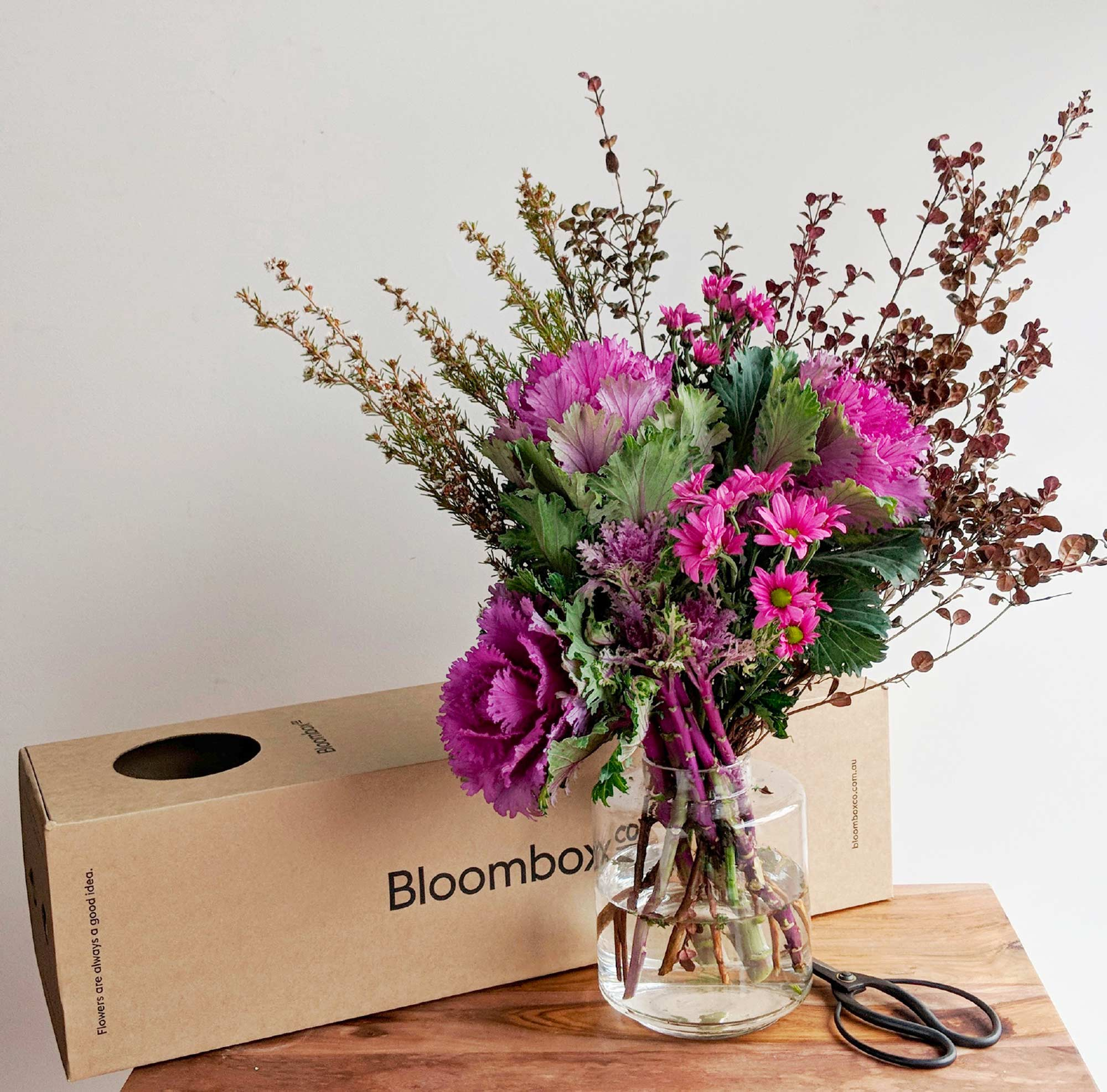 picture_bloombox2