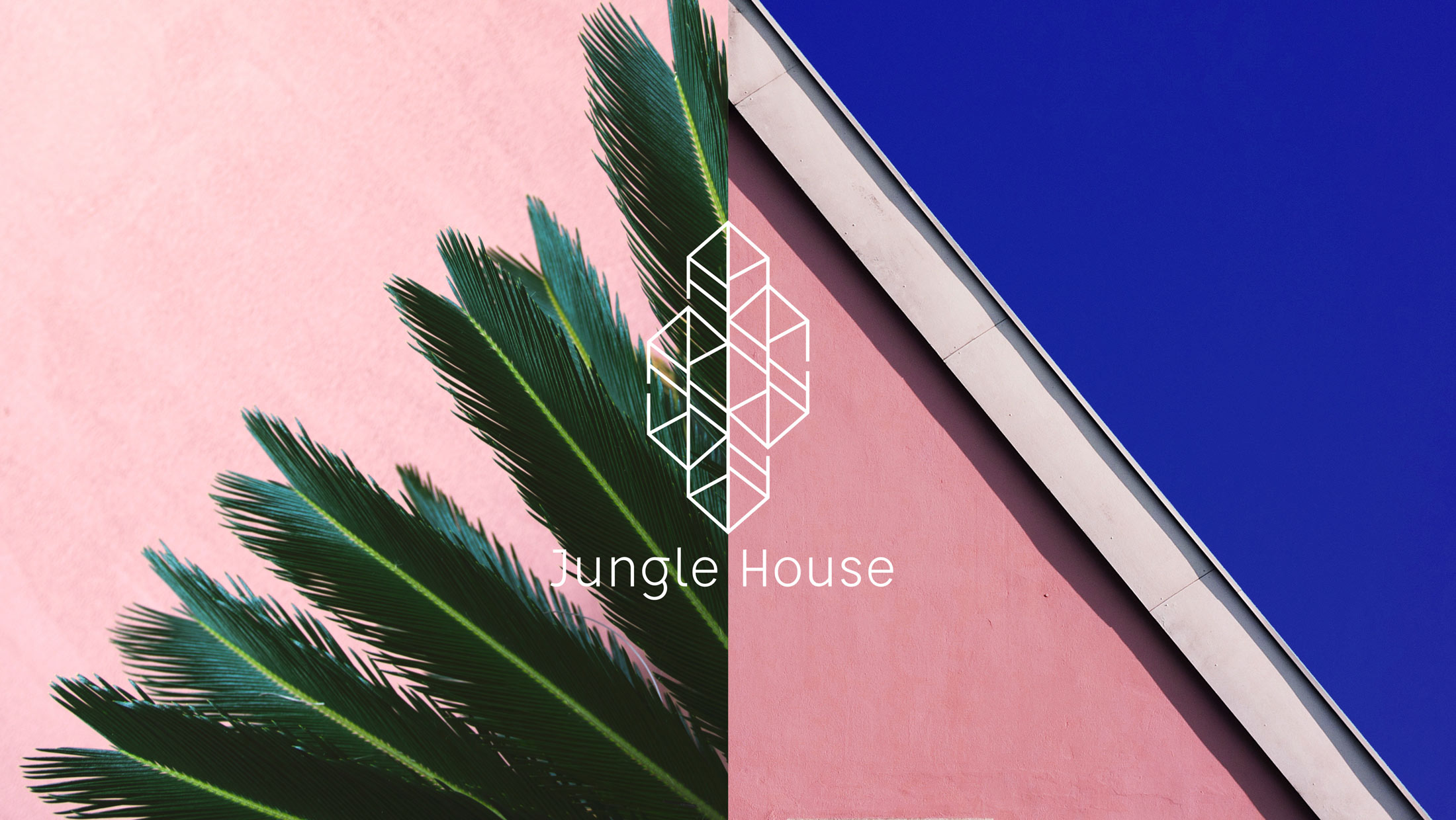 Jungle_house_key_visual